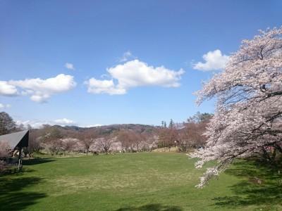 春のアルプス公園